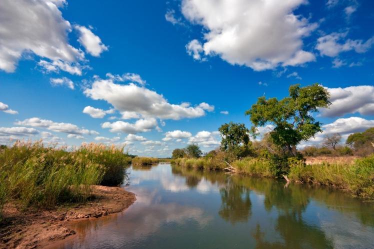 Kruger_National_Park_Landscape_3